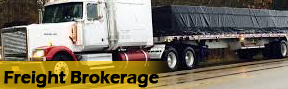 Freight Truck - Shipping Company